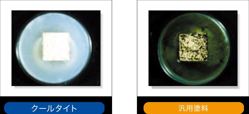 クールタイト/防かび・防藻性